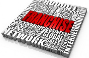 Entrepreneurship and the safety net of franchising