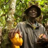 Electronic Payment for Cocoa Farmers in Ghana